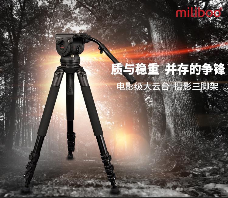 M8L_01
