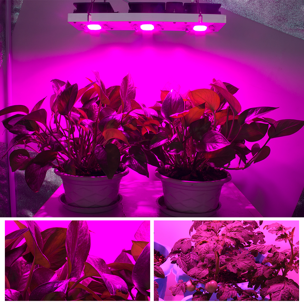 led grow light 14