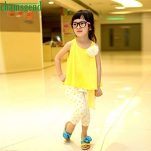 2017 cute Best seller drop ship  Summer PC Girls New Baby Baby Girl Dot Flower Set Toddler Vest Clothing S30 baby clothes