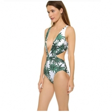 New Bikini Set 2017 Sexy Brazilian Bikini Push Up Green printing Swimwear Women Swimsuits fashion one piece swimsuit bikini(China)