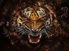 Modern Abstract Art Tiger Oil Painting HD Printed Decoration On Canvas With Framework Hang on the Wall