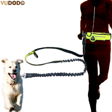 Hand Free Nylon Waist Dog Leash With Pouch Bag Adjustable Elastic Pet Sports Lead Belt Running Jogging Leashes For Small Dogs(China)