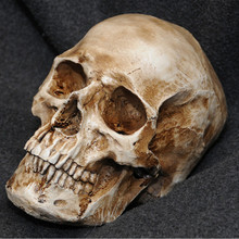 P-Flame Antique Imitation Human Skull Replica Resin Model Medical Realistic lifesize 1:1 Handmde Resin Crafts Home Decoration(China)