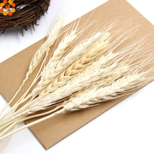 Natural!20PCS Artificial Autumn Wheat Flower Bouquet Wreath Fake Flowers DIY Scrapbooking&Home Garden&Wedding Party Decoration(China)
