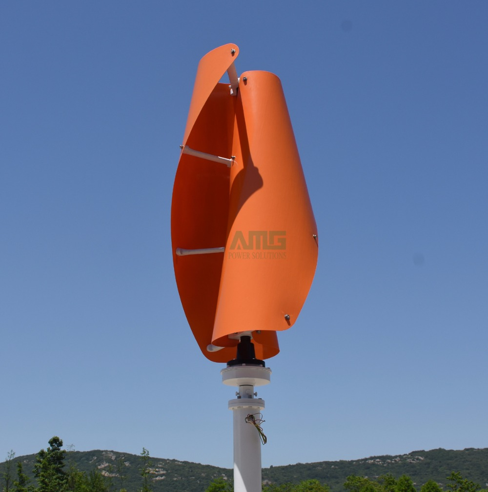 orange -2.jpg -