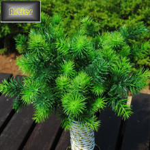 Artificial Flower Artificial Plastic Flower Green Small Pine Milan Grass Milan Tree AD0207