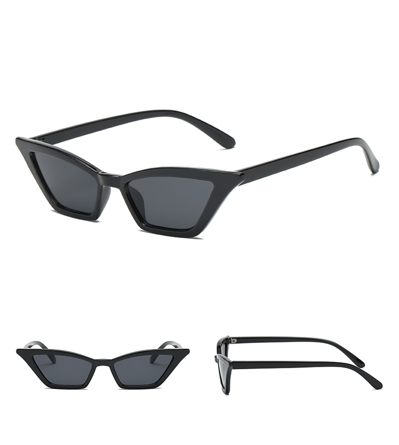 cat eye sunglasses 0366 details (4)