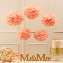 Free Shipping 5pcs 20cm(8 inch) Tissue Paper pom Poms Wedding Party Paper pompom Flower For Wedding Decoration pompoms pom pom(China)