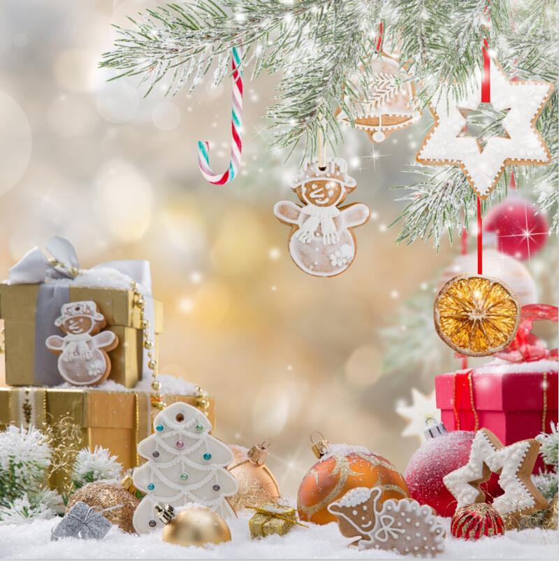 SHANNY 10x10ft  Vinyl Custom Christmas  theme Photography Backdrops Prop Studio Background HU-05291<br>