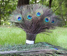 20pcs /lot Peacock feathers 10-12 inch /25-30cm Natural Feathers Wedding, Party ,Home Decoration peacock tail feather