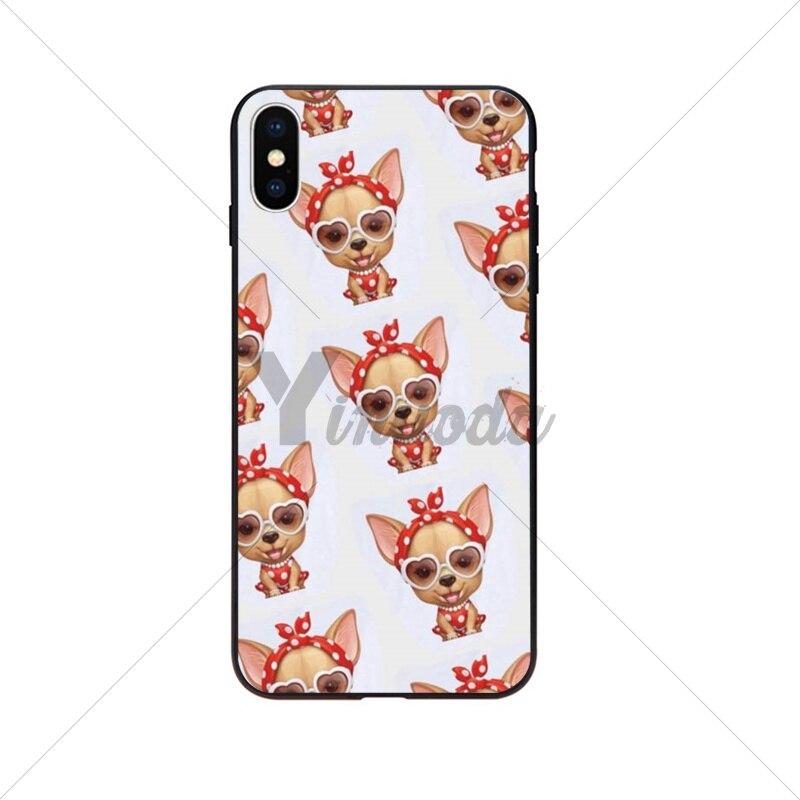 animal Dog Puppy PugChihuahua