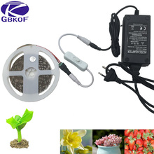 LED Grow Light Full Spectrum DC 12V 5050 Aquarium Greenhouse Plant Growing Light Set + adapter hydroponic apollo phyto lamp(China)