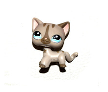 Pet Shop Animal Grey Striped Cat Loose Figure Child Girl Toy(China)