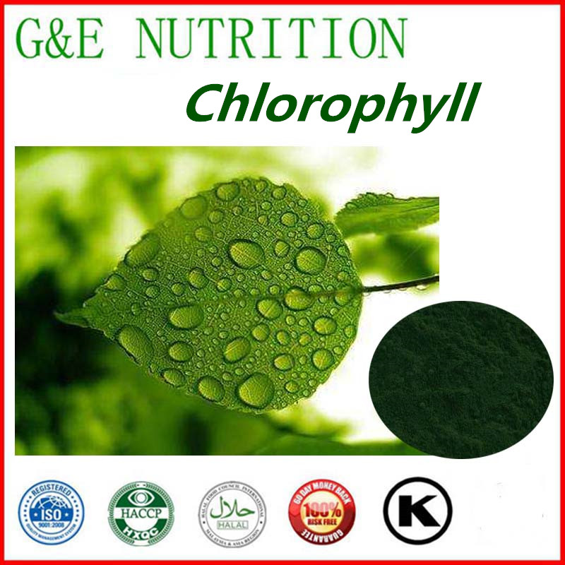 Free shipping Natural High Quality Food Additive Sodium Copper Chlorophyll 99% Powder <br>