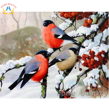 Diy pictures by numbers snow birds wall craft Modular painting by numbers on canvas acrylic coloring drawing wall art Y103(China)