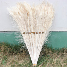 Free shipping 100pcs/lot white dyed peacock feather 32-35 inch /  80-90cm peacock feathers for sale wholesale wedding decoration