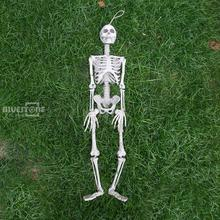 3ft Tall Realistic Skeleton Halloween Decor Scary Man Bone Creepy Prop