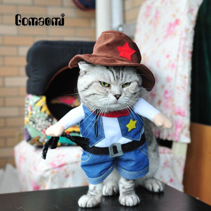 фото кошек в одежде мужчины сих пор