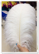 "Free shipping white and black 20""-22""/50-55CM ostrich feathers plumage flapper dresses for craft /DIY accessories 20pcs/lot(China)"