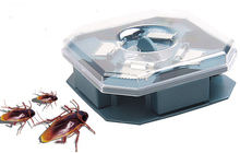 High Quality Safe Efficient Anti Cockroaches Trap Killer Plus Large Repeller No Pollute No Electric No Poison(China)