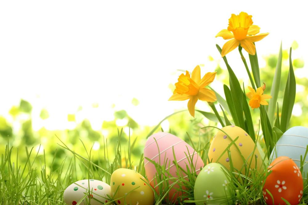 200cm*150cm easter photography backdrops Eggs green flowers photo Easter Sunday ZJ<br><br>Aliexpress