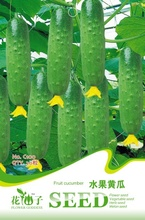 Green Fruit Cucumber Seeds, Original Pack, 20 Seeds / Pack, Sweet Crisp Fruit Eaten it Raw C100