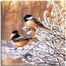 New Hot 3d Diy Diamond Embroidery Painting Kits Square Rhinestone Pattern cross stitch picture In winter the birds decor crafts