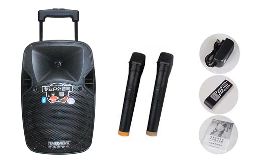 High Power Loudspeaker 24