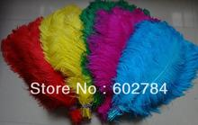 EMS Free shipping Ostrich Feathers 50pcs(mix two color) 60-65cm 24-26 inches ostrich drab feather for wedding center pieces