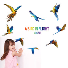 Colorful Parrot Birds Wall Sticker Macaw Magpie Home Decoration Wall Decals for Kids Room Bedroom Dream Fly Sticker Animal Gifts(China)