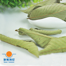 200g Chinese herb tea 8 bags organic dried guava leaf&dried guava leaf tea&Psidium guajava leaf tea&dried guava leaves