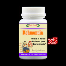 5 bottles 500Pills Diabetes Treatment Radix Rehmannia Extract Effects on central nervous system and cardiovascular function(China)