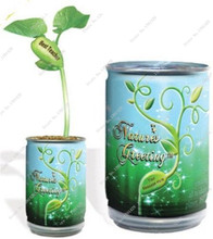 Magic Growing Message Beans Seeds Climbing plant Magic Bean Natural Growth Plant Home Decoration 2Pcs Flower Pots Planters(China)