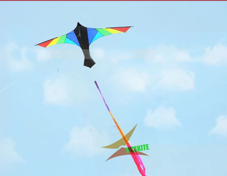 free shipping high quality large kite swiss firebird  kite with handle line hcxkites factory desert eagle aerobatic kite flying<br><br>Aliexpress