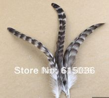 100/lot Rooster Saddle Grizzly Feather- Feather hair Extension, 6- 8'' FREE SHIPPING