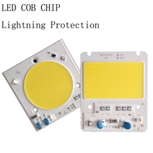 Waterproof IP65 50W Led light bulbs Smart IC Cob Chip LED Lamp Lightning Protection For DIY Spot light Led Floodlight(China)