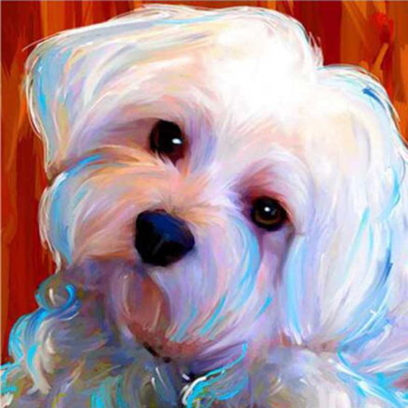 lap dogs maltese dogs full square Diamond Embroidery Flower 5d diy diamond Painting full round drill Rhinestone