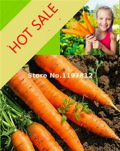 A Package 400 Carrot Seeds Good Flavor Nice Color Fruit Vegetable Plants High Germination Sementes For Garden Diy Plant Semillas