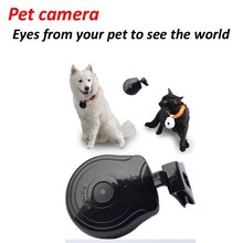 Pet camera & Automatic Dog Cat LCD Video Camera Recorder Show Pet Owner Phone Number
