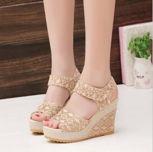 Women Shoes 2017 Summer New Open Toe Fish Head Fashion High Heels Wedge Sandals