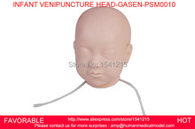 NURSING MANIKININ,FANT COMPREHENSIVE VENIPUNCTURE HEAD, BABY HEAD VEIN PUNCTURE MODEL ,INFANT VENIPUNCTURE HEAD-GASEN-PSM0010(China)