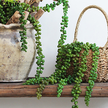 Luyue Artificial Flower String PU Fake Wall Hanging Plant Succulents Valentine's Day Gifts Garden Wreath Home Wedding Decor(China)