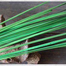25 Pieces A Bunch Aquatic Leaves Natural Dried Plant Long Grass 120 CM Hotel Home Decoration Flower Arrangement Material