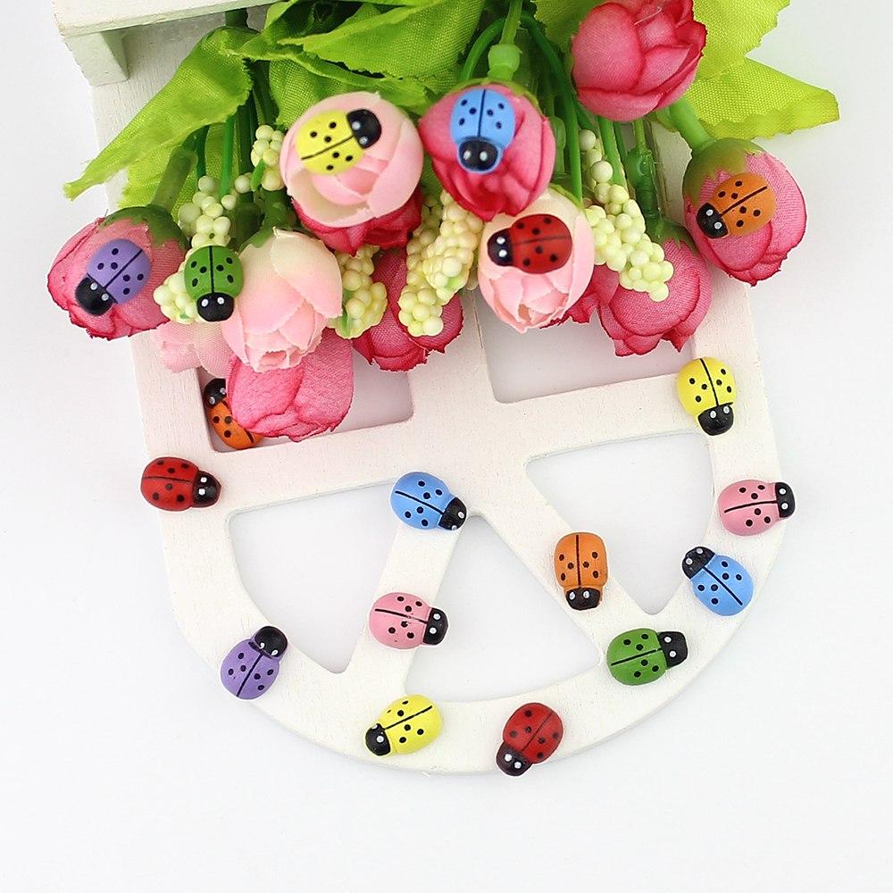 ColorfulWooden Ladybug