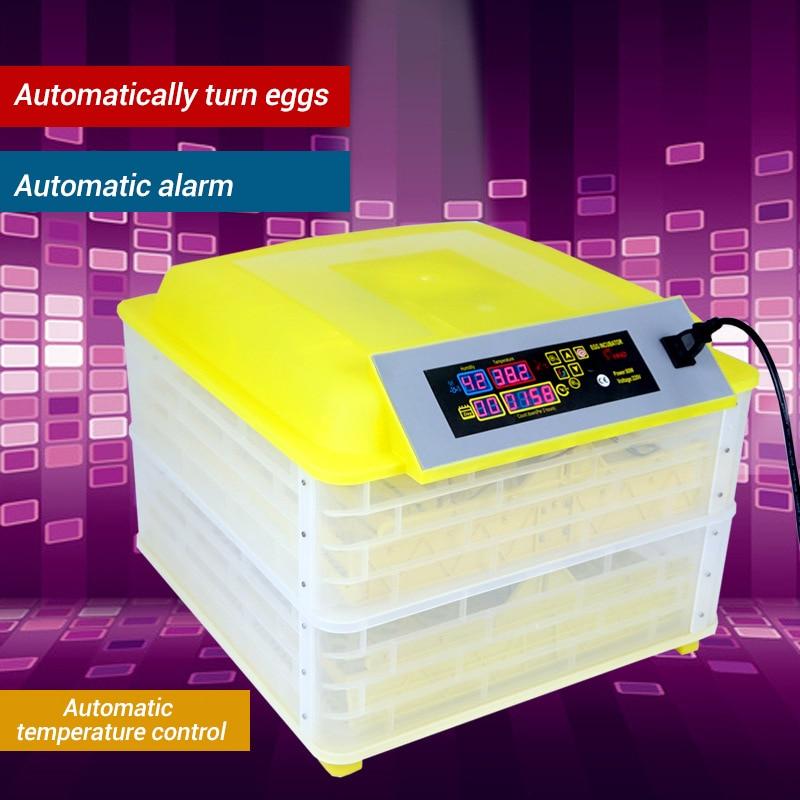 Egg Incubator (15)