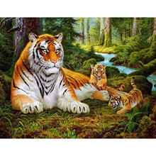 Framed Tigers Animals DIY Painting By Numbers Acrylic Picture Wall Art Canvas Painting Home Decor Unique Gift 40x50cm Artwork