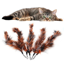 5 pcs/set  Top quality Pet Cat Toy Feathers Replace Head Feather Toy for Cats Color Multi Products For Pet