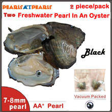 50pcs Vaccum Packed Wish Pearl in Oyster With TWIN AA+ 7-8mm Round Black Pearl in Each Oyster Shell