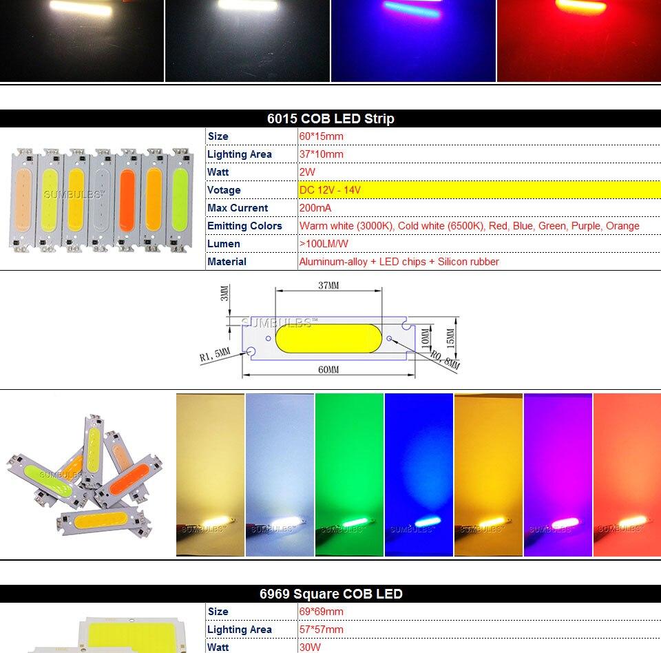 COB LED Strip Light Lamp Bulb 10W 20W 30W 50W Warm Natural Cold White Blue Red Chip On Board LED Matrix Lighting 1-50W (3)