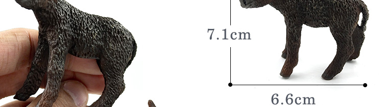 -12--DW-M-MY87_27